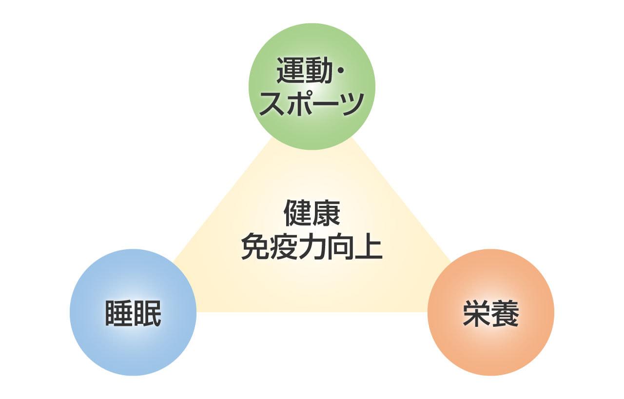 免疫力向上につながる「運動」「栄養」「睡眠」の3つのバランスの図