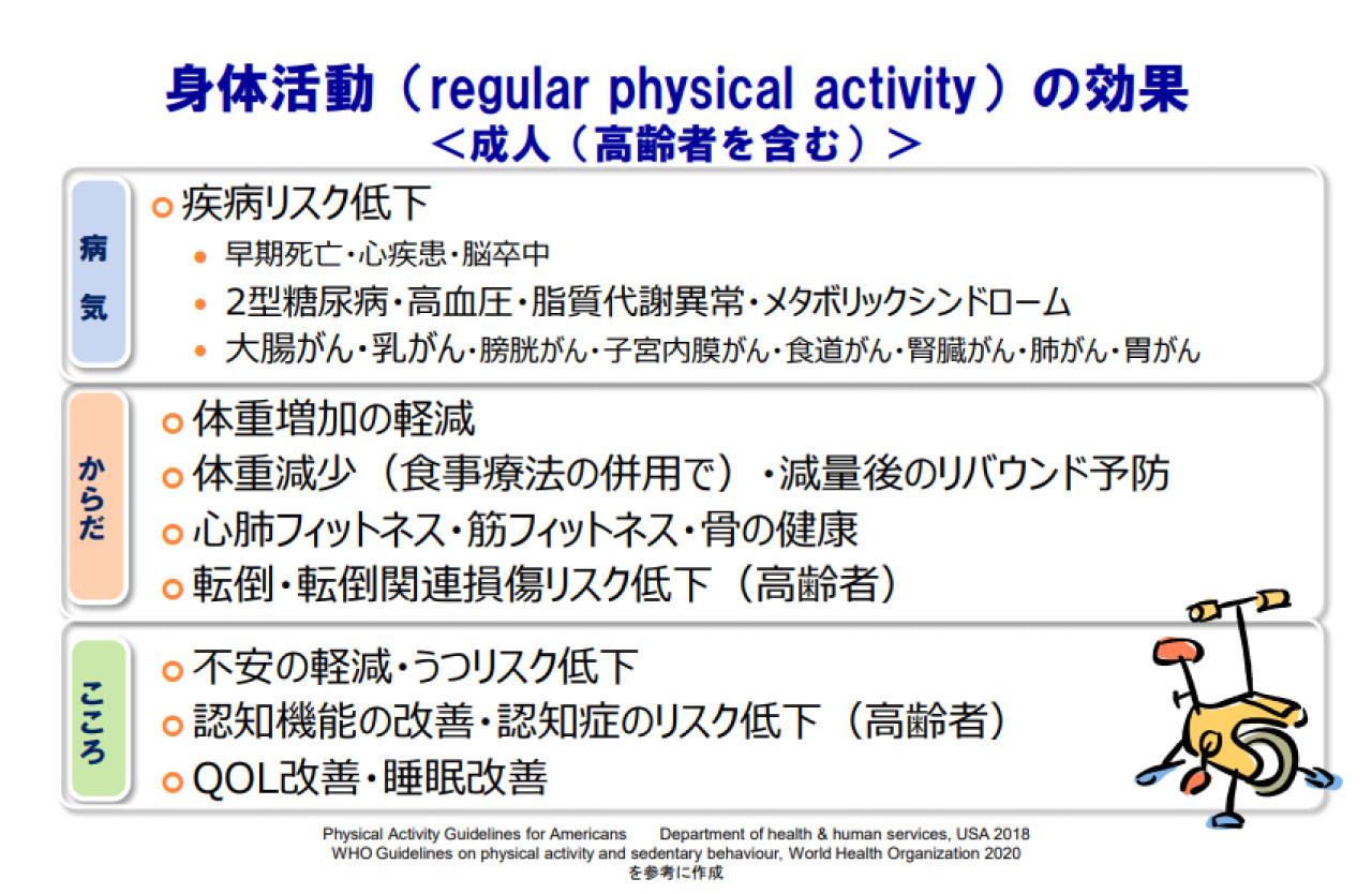 身体活動(regular physical activity)の効果<成人(高齢者を含む)>