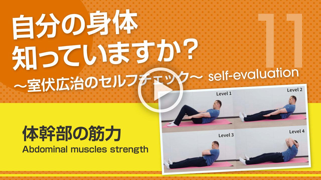 体幹部の筋力 サムネイル