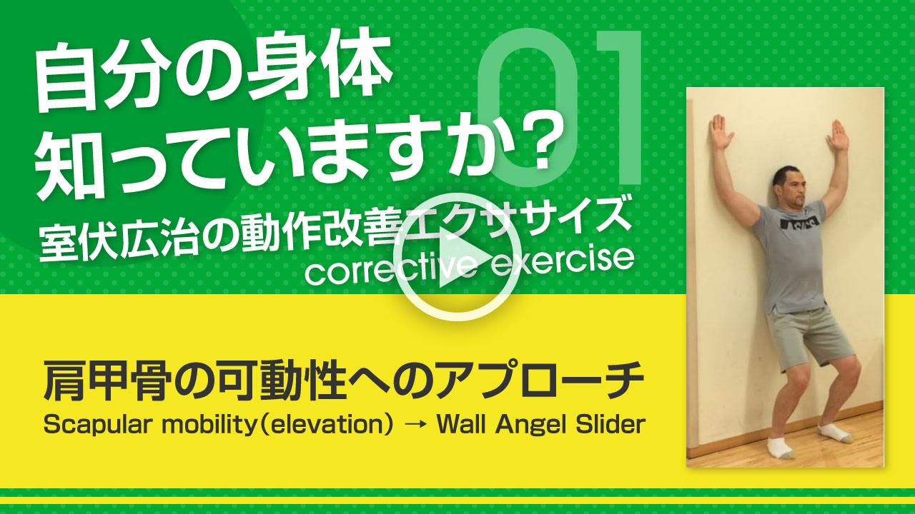 肩甲骨の可動性へのアプローチ サムネイル